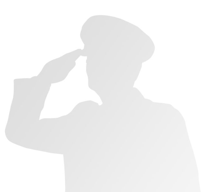 grey soldier saluting